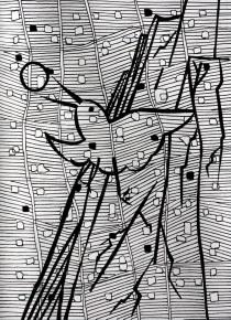 Mountain bird - pen grid drawing