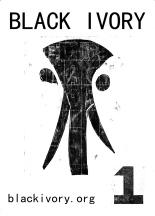 Black Ivory Artzine