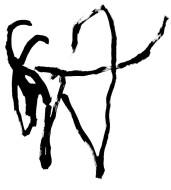 antelope_700