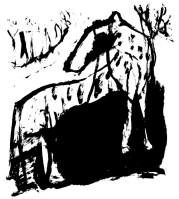 wild_dog_700