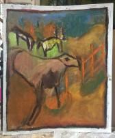 goat field_1000