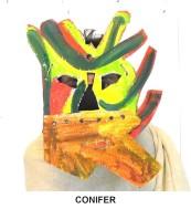 masks_catalogue_individuals_13_conifer800