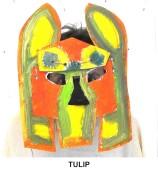 masks_catalogue_individuals_24_tulip800