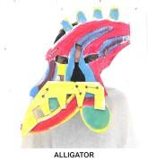 masks_catalogue_individuals_30_alligator800