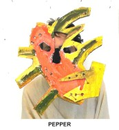 masks_catalogue_individuals_6_pepper800