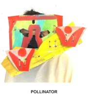 masks_catalogue_individuals_35_pollinator800