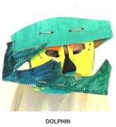 masks_catalogue_individuals_40_dolphin800