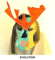 masks_catalogue_individuals_45_evolution