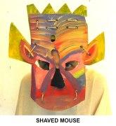masks_catalogue_individuals_50_shaved_mouse