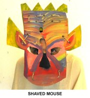 masks_catalogue_individuals_50_shaved_mouse