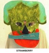 masks_catalogue_individuals_54_strawberry