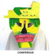 masks_catalogue_individuals_61_coniferous